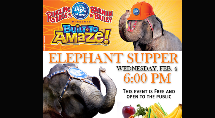 Elephant Supper