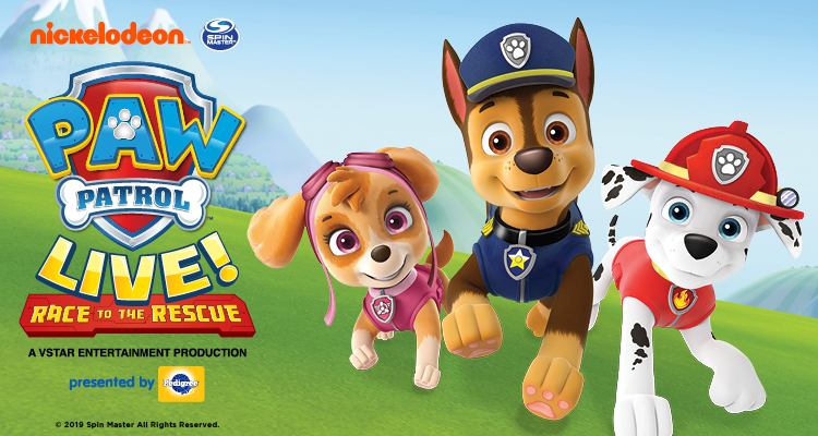 "Paw Patrol ""Race to the Rescue"""
